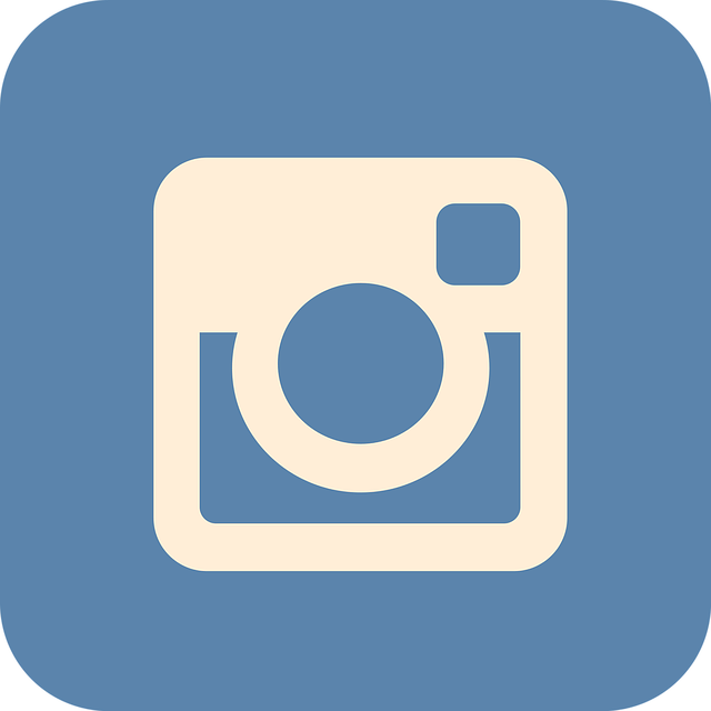 Free photo insta icon. Professional clipart professional networking