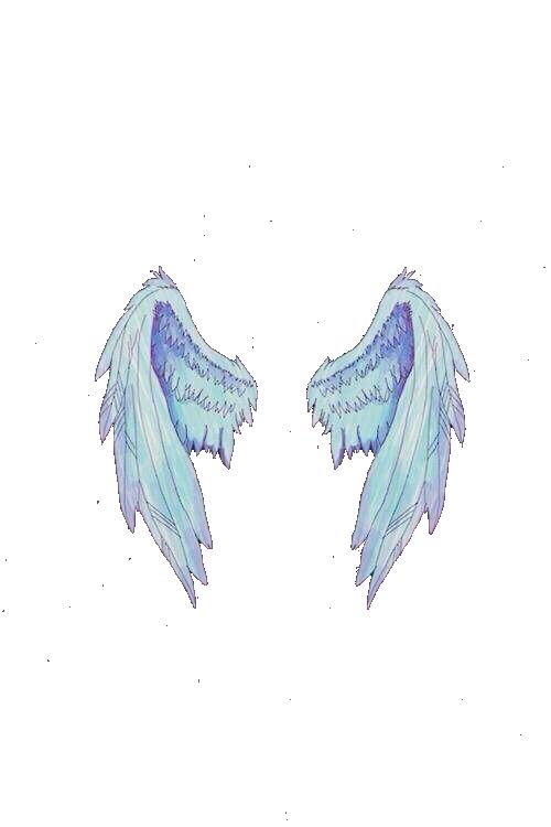Fotos com asas no. Wing clipart picsart