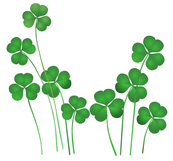 collection of clover. Irish clipart banner