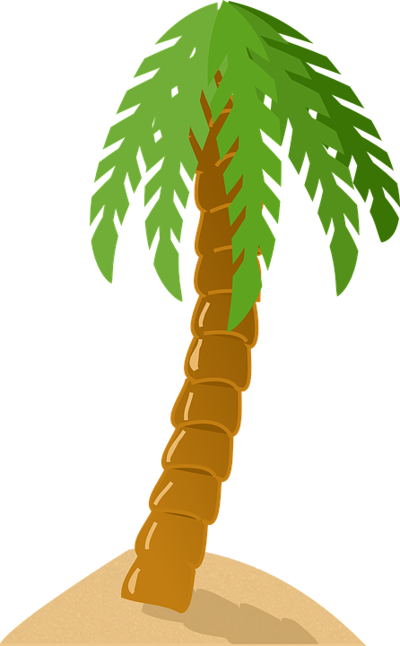 Collection of hawaii island. Tree clipart atis