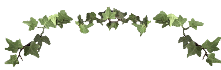 clipart free library. Ivy border png