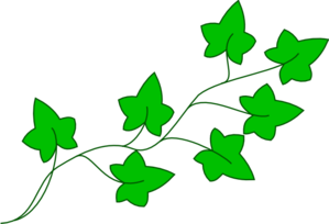 Free cliparts download clip. Ivy clipart