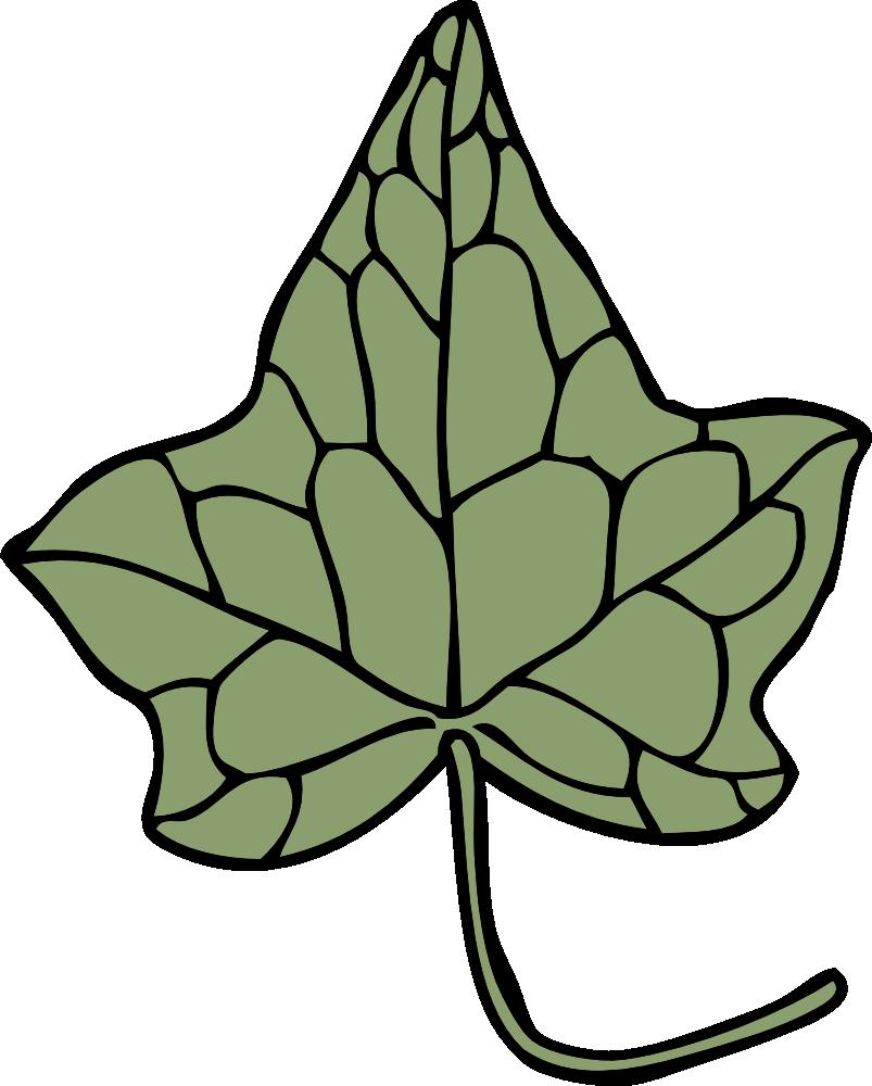 Ivy clipart alpha kappa alpha. Onlinelabels clip art leaf