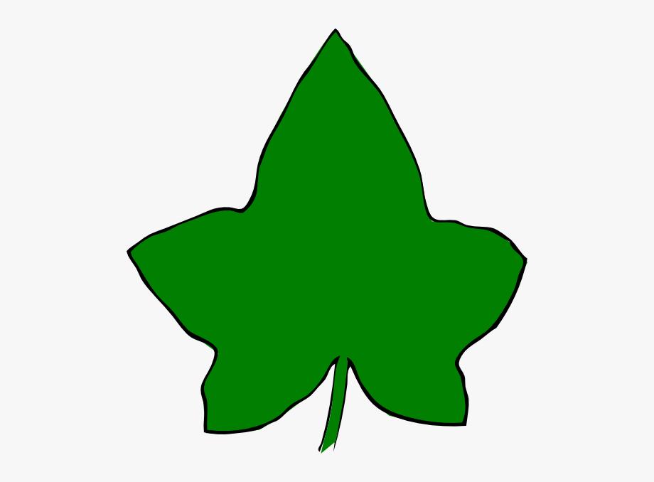 Ivy clipart big leaf. Green clip art at