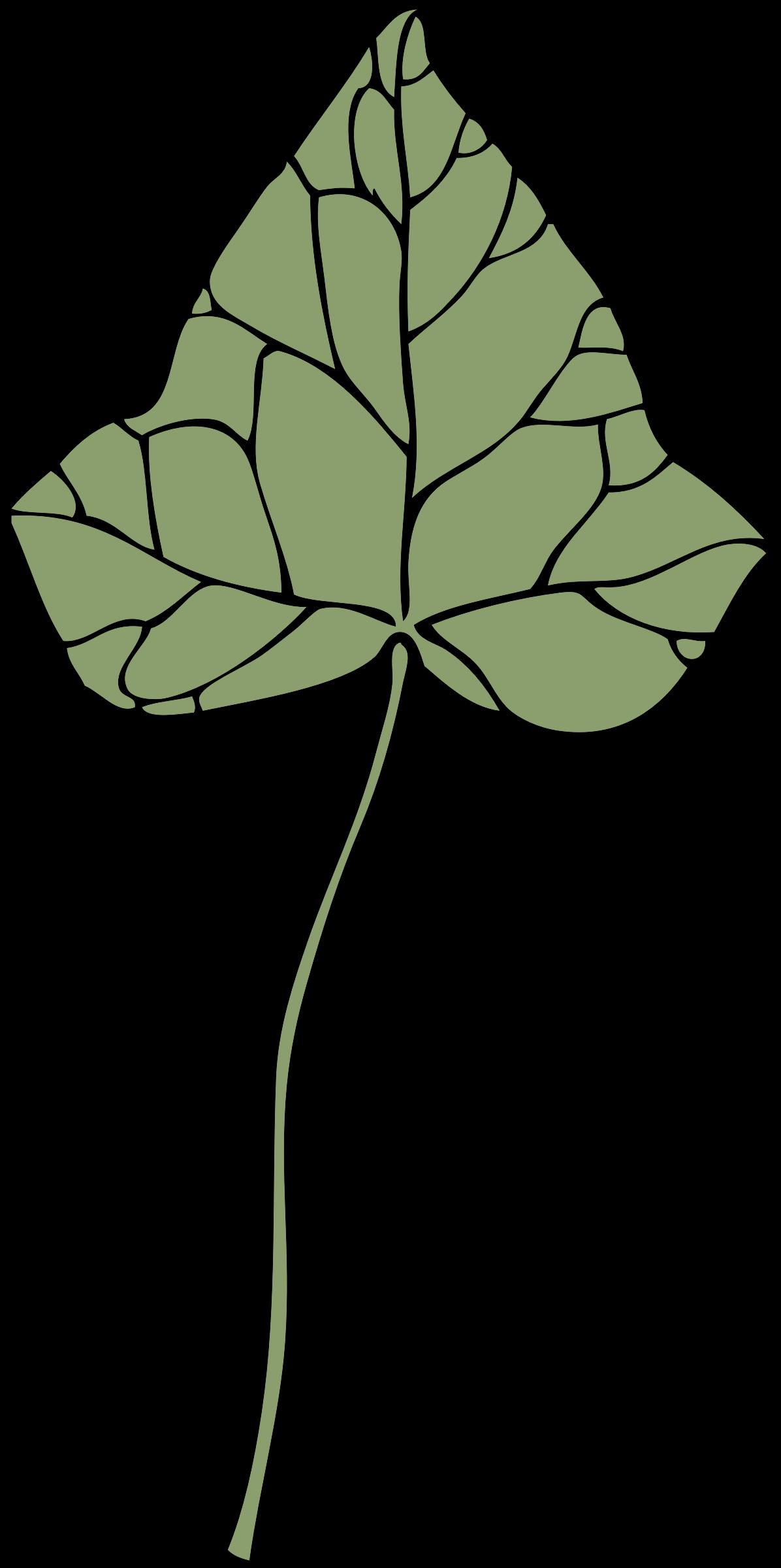 Image png. Ivy clipart big leaf