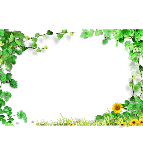 Template green leaves frame. Ivy border png