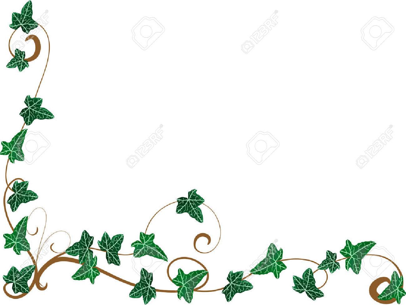 Ivy clipart design. Free download best on