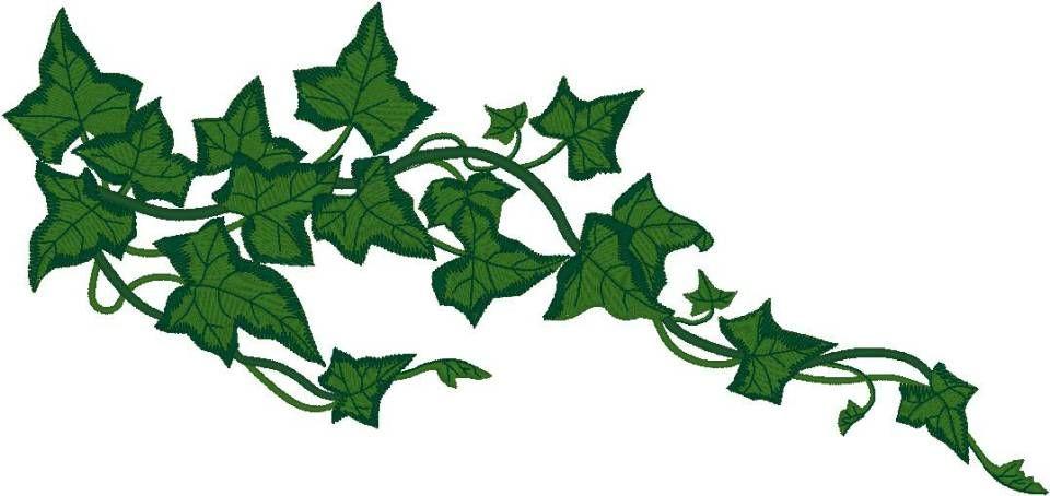 Quilt vines plant leaves. Ivy clipart design