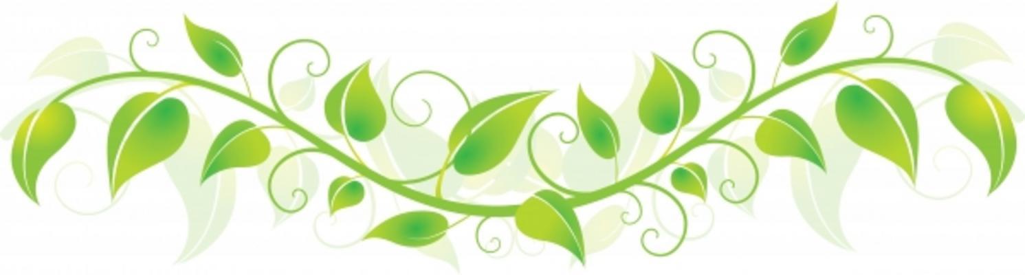 Ivy clipart horizontal.  vines clip art