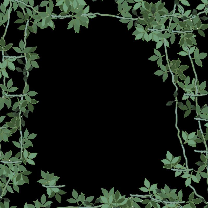 Jungle clipart frame. Green floral medium image