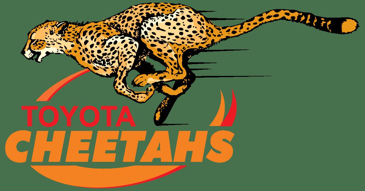 Jaguar clipart cheetah. Cheetahs rugby logo png