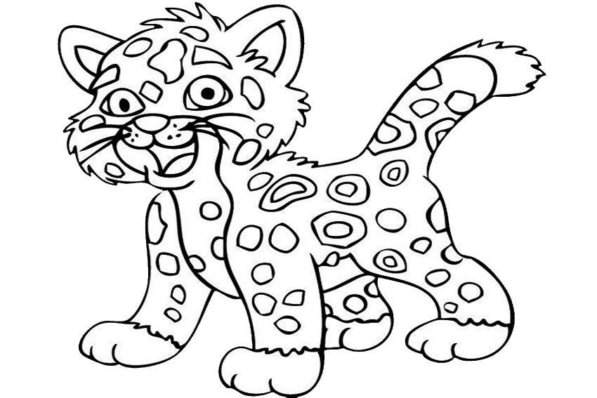 Free pictures to download. Jaguar clipart color