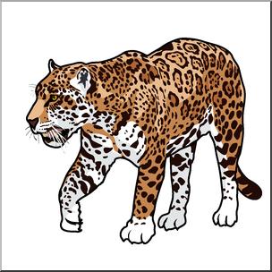 Jaguar clipart color. Clip art big cats