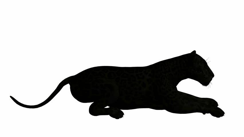 Download black icon cat. Jaguar clipart panther