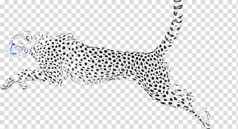 Jaguar clipart snow leopard. Cheetah transparent background