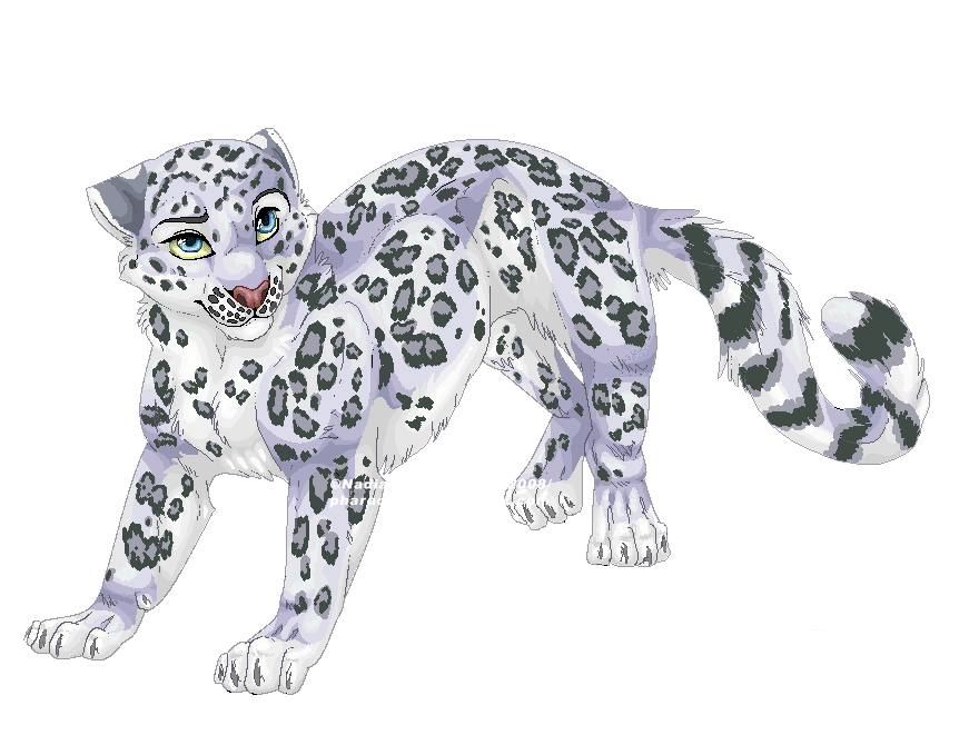 Crazywidow info. Jaguar clipart snow leopard