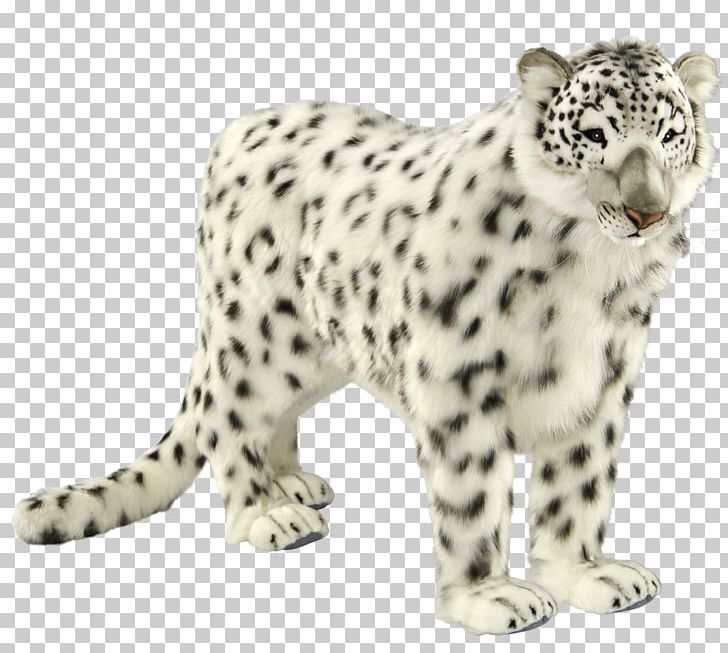 Jaguar clipart snow leopard. Cheetah carnivora png animal