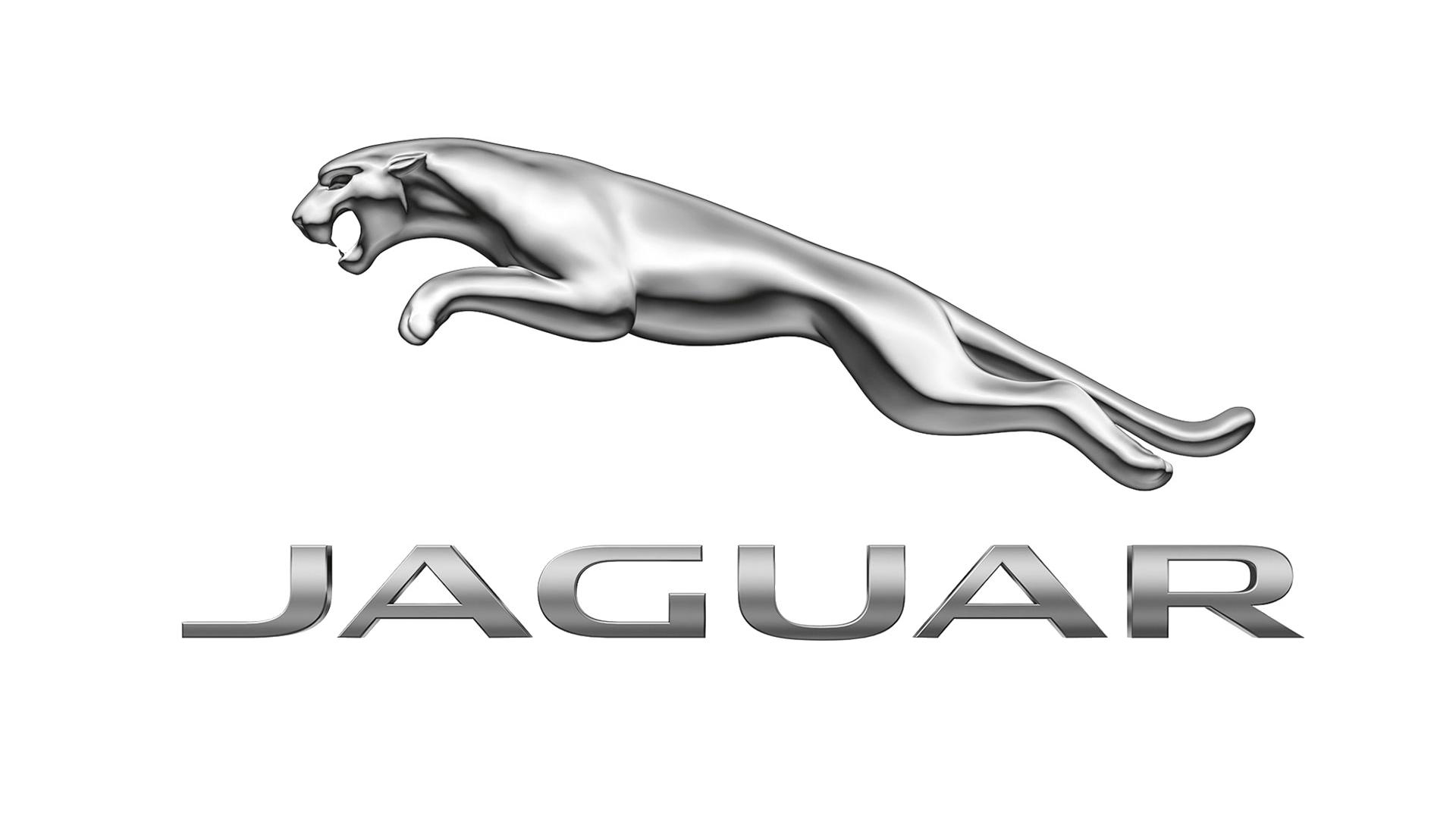 Jaguar clipart team. Png black and white