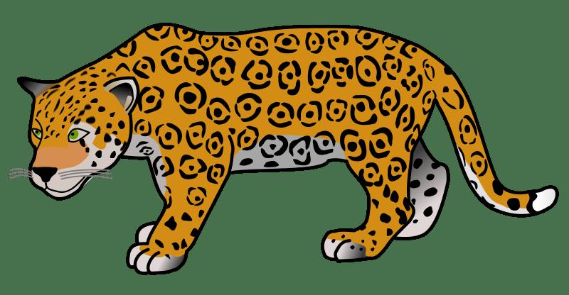 Jaguar clipart woman.