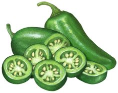 Jalapeno clipart. Cut half pepper with