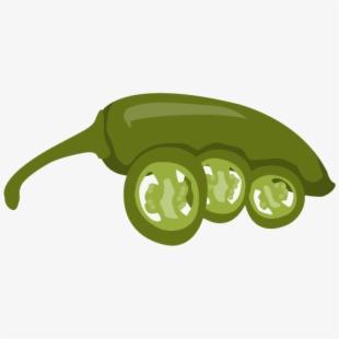 Mild chili serrano pepper. Jalapeno clipart capsicum