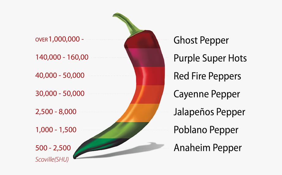 Jalapeno clipart cartoon. Peppers popper bird s