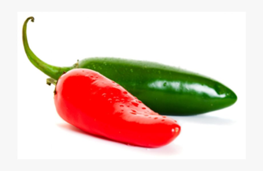 Jalapeno clipart red jalapeno. Xanadu jalapenos hot pepper
