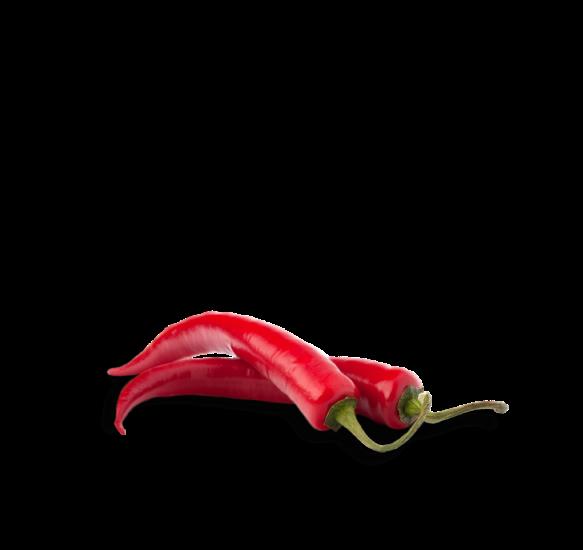 Peppers clipart serrano pepper. Harrybasco the best damn