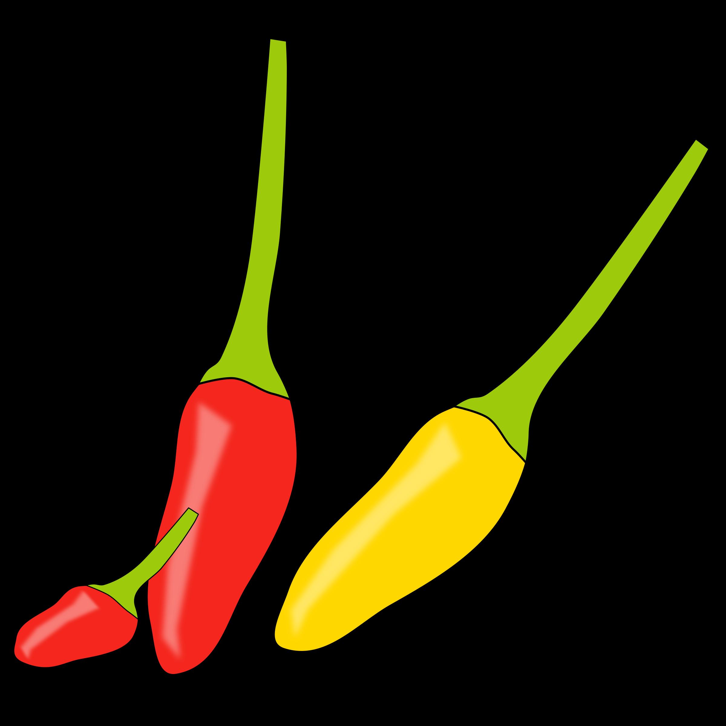 Chilli icons png free. Jalapeno clipart serrano pepper