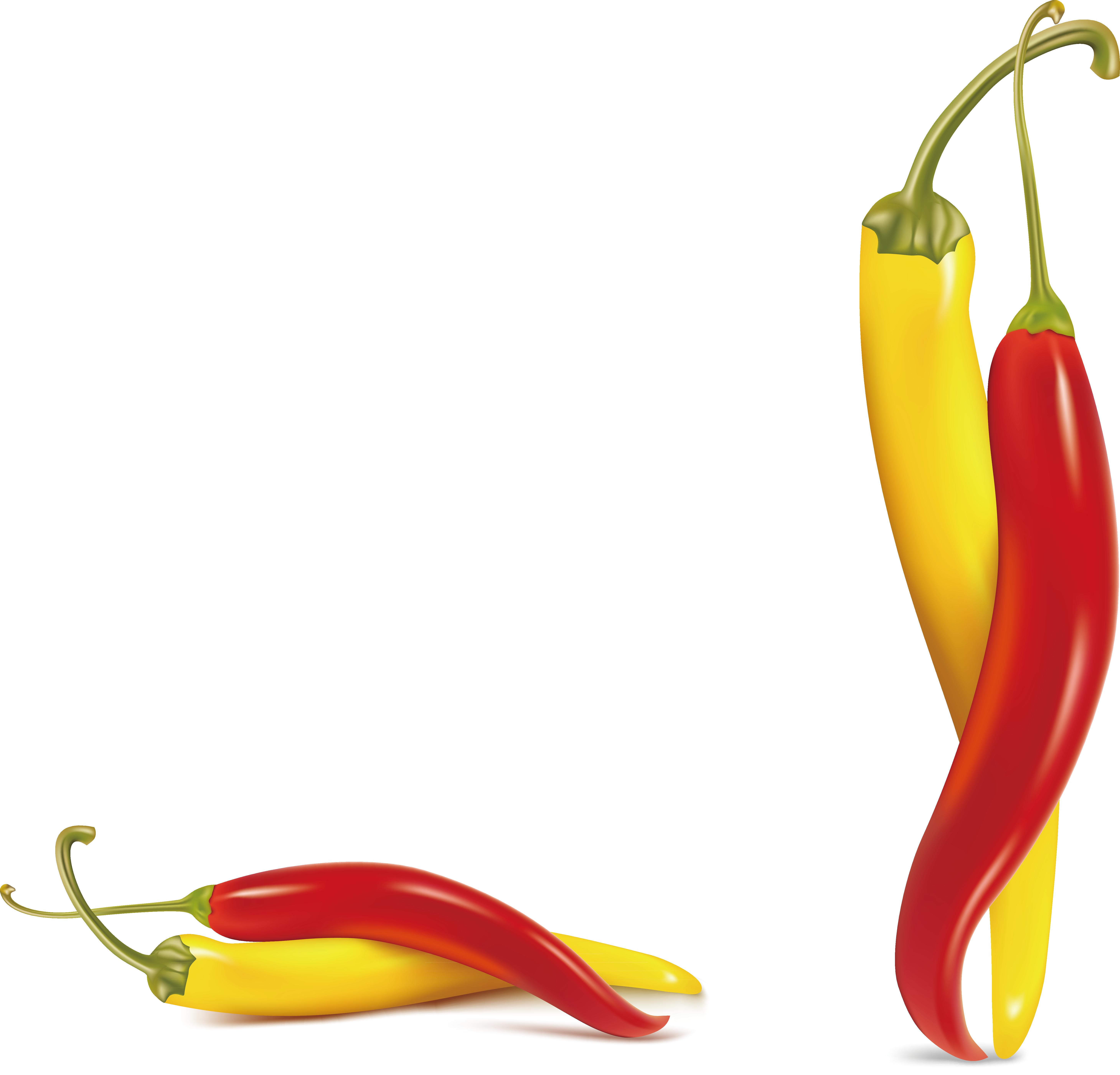 Jalapeno clipart serrano pepper. Pimiento guindilla de cayena