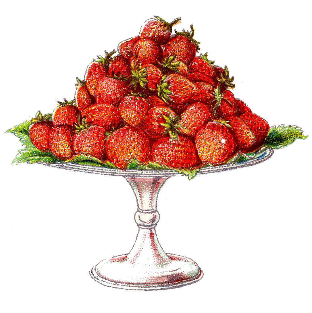 Strawberries clipart vintage strawberry.  the graphics fairy