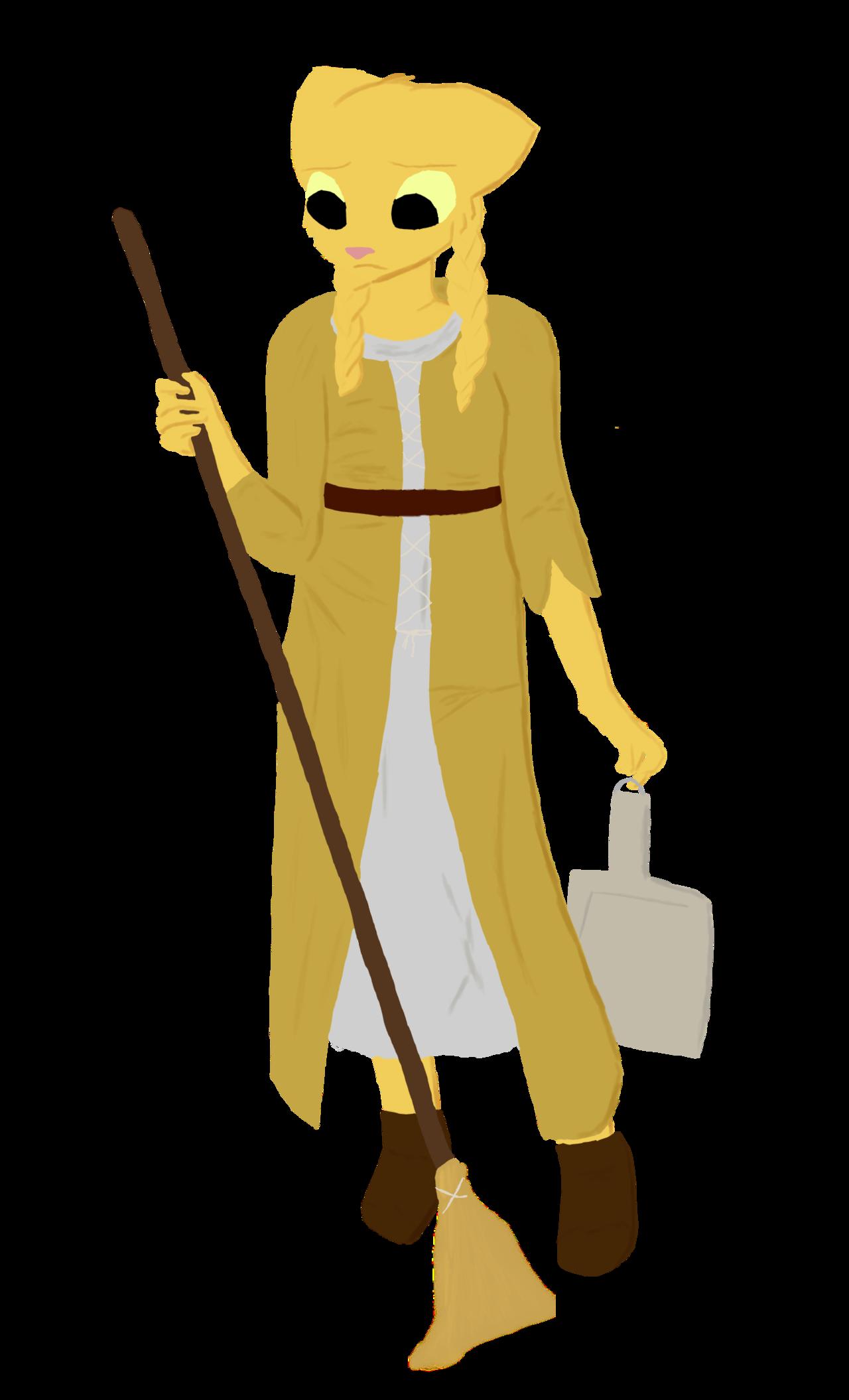 Janitor broom