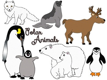 Free cold animals cliparts. January clipart artic animal