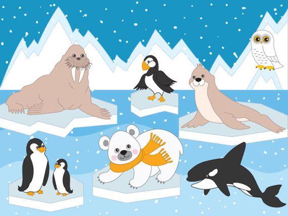 Arctic animals digital vector. January clipart artic animal