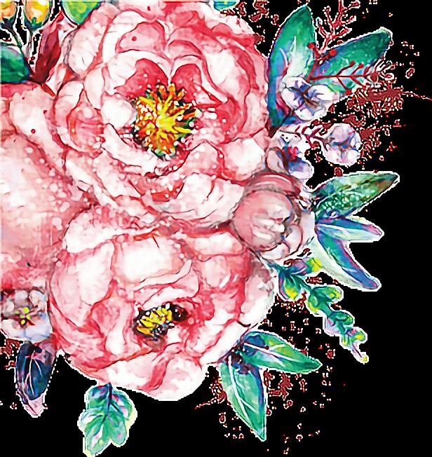 Watercolour flowers paint flowerfreetoedit. January clipart watercolor