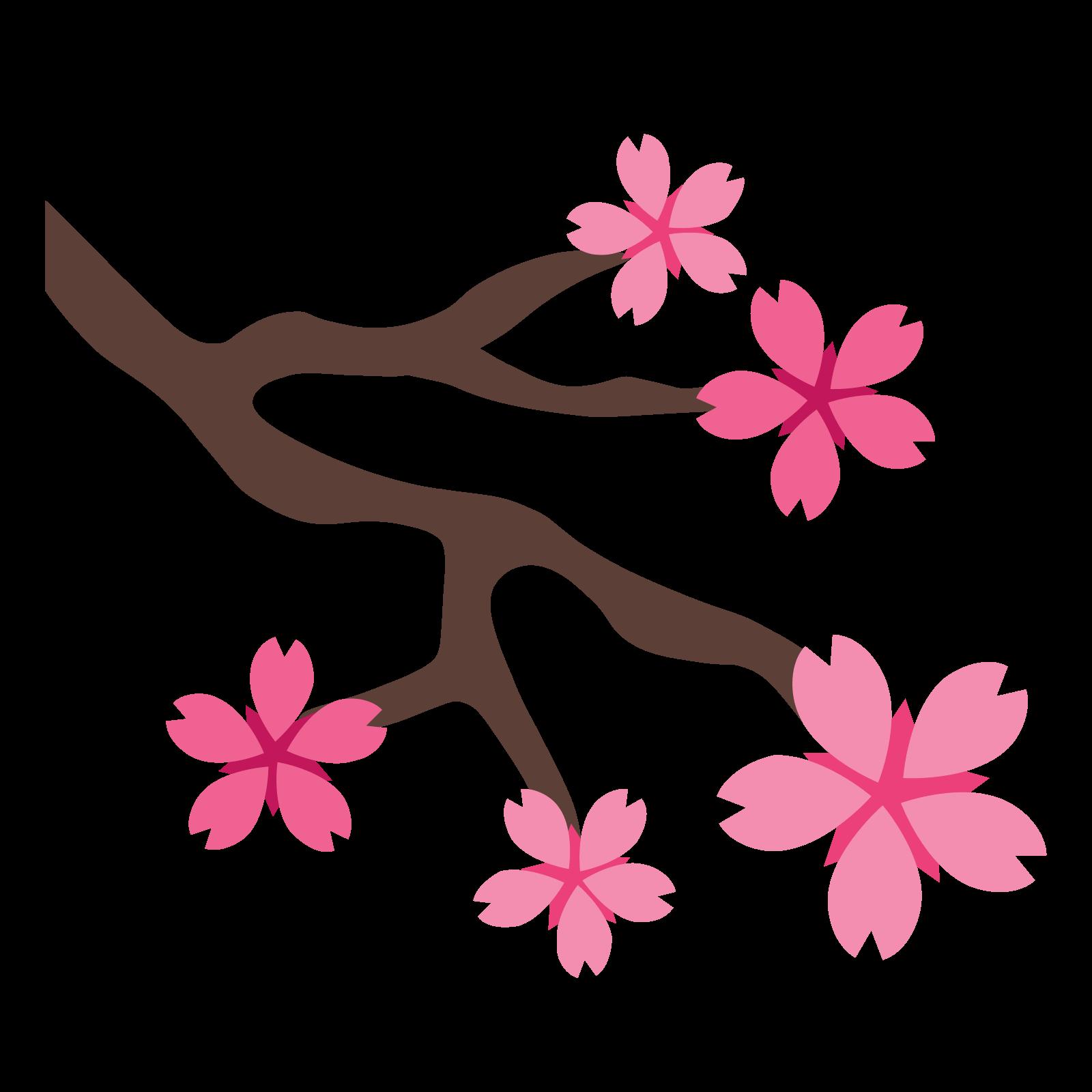 . Sakura flower png