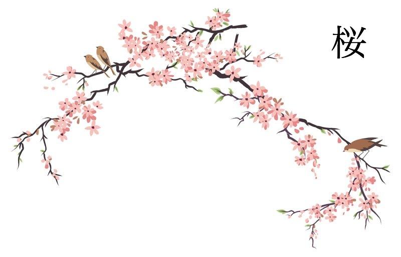 Art wallpaper blossoms . Japanese clipart japan cherry blossom