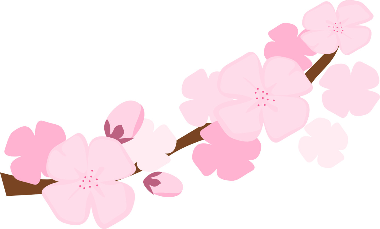 collection of cherry. Japanese clipart peach blossom