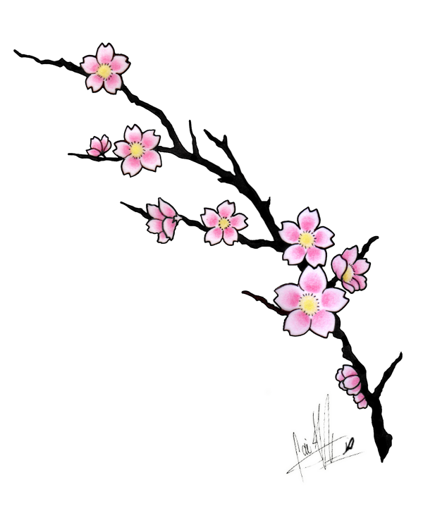 Vines clipart cherry blossom. Tattoos tattoo design by
