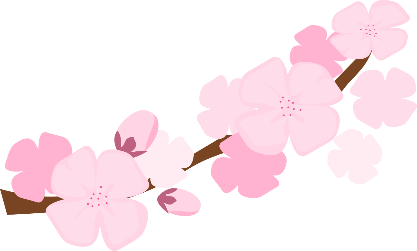 Japanese clipart background. Best free cherry blossom