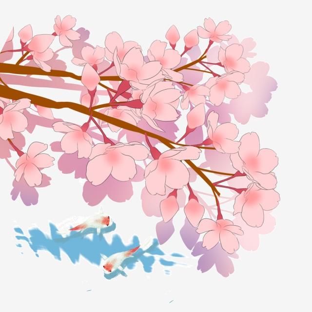 Japanese clipart japan cherry blossom. Spring koi landscape