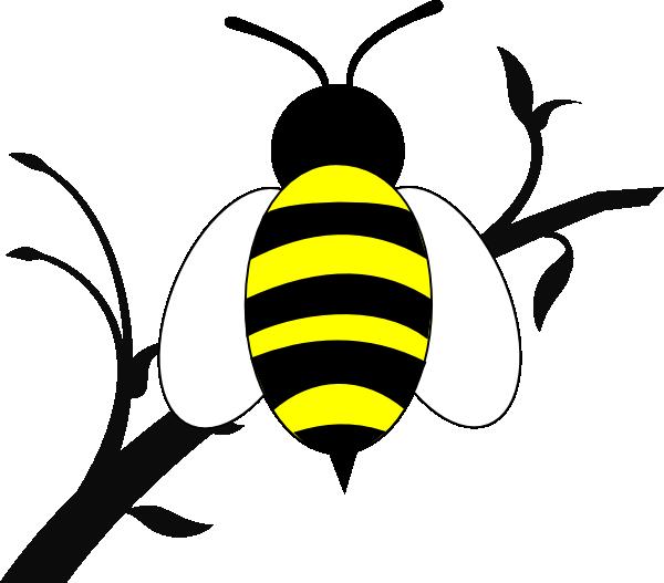 Jar clipart honey bee. Over branch clip art