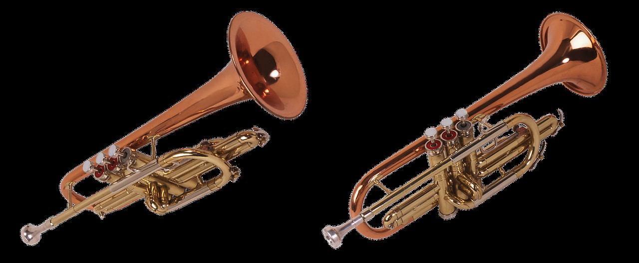 Maine news page your. Jazz clipart cornet