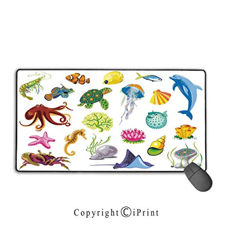 Jellyfish clipart animal shell. Amazon com waterproof mouse