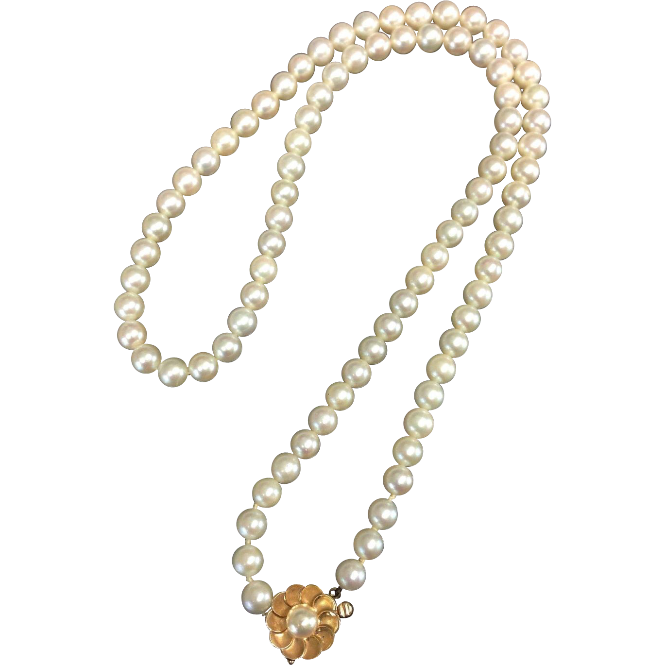 Necklace clipart small black pearl. Beautiful k karat gold