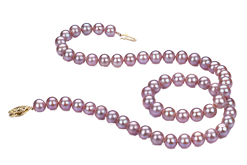 necklace clipart bead necklace