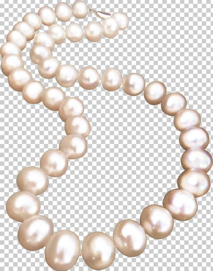 Necklace clipart pearl necklace. Jewellery png bead