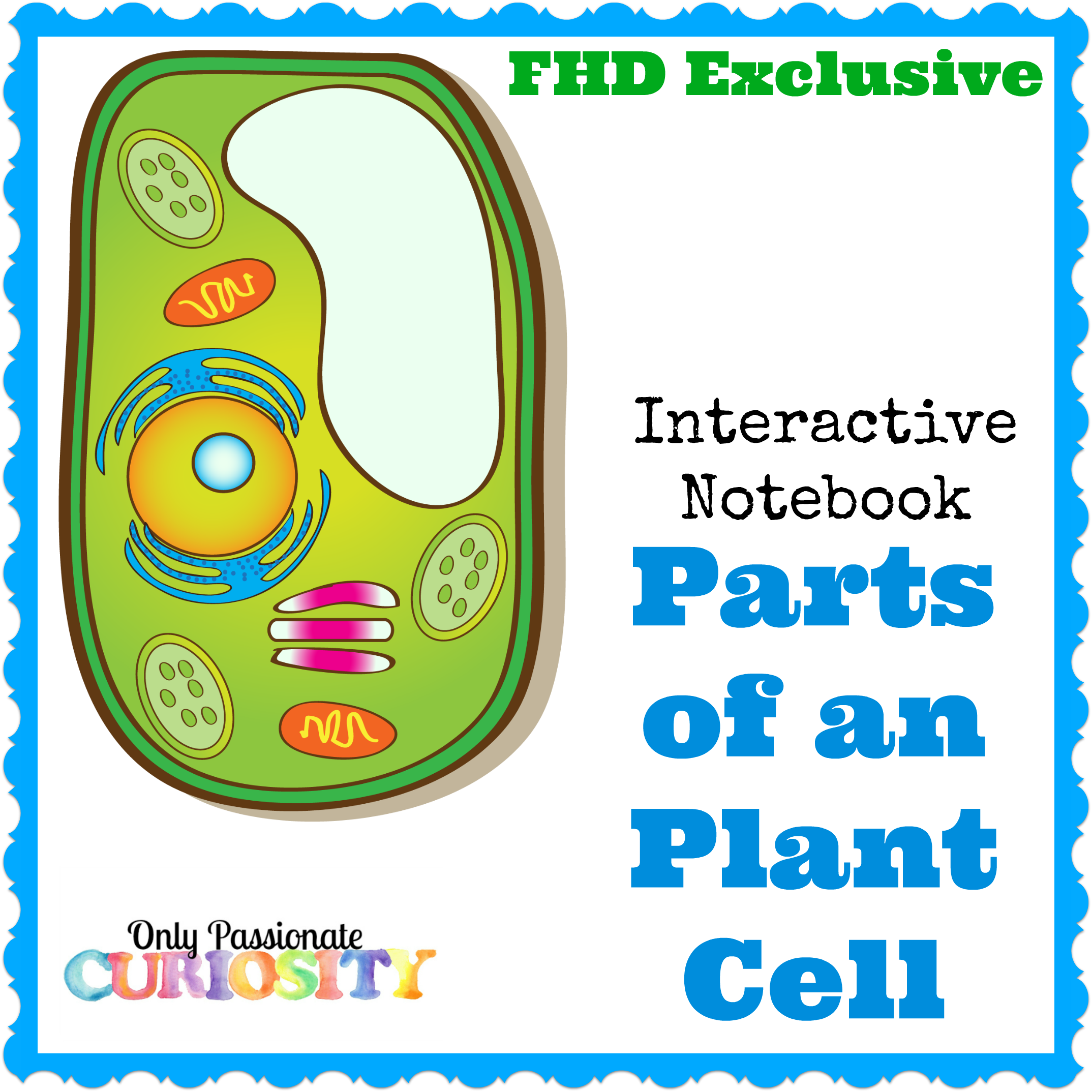 Notebook clipart interactive notebook. Free plant cell instant