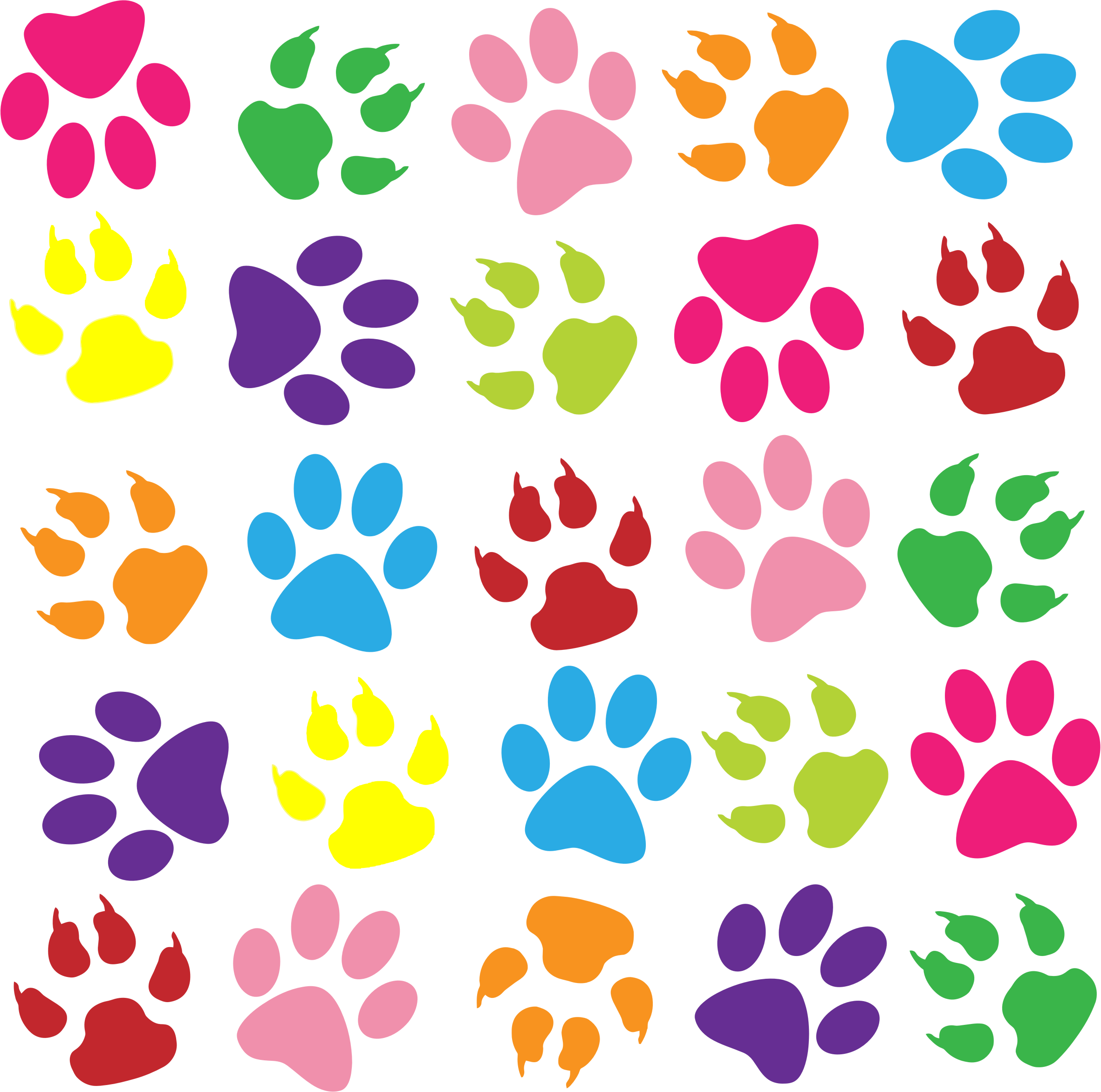 clip art colorful. Pattern clipart paw print