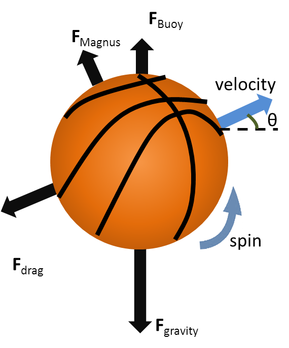 Forces acting on a. Jump clipart gravity force
